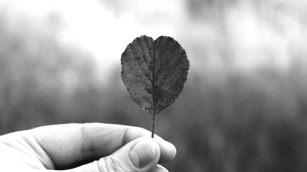 Brunnenin blogi: Vastuullisuusviestintä